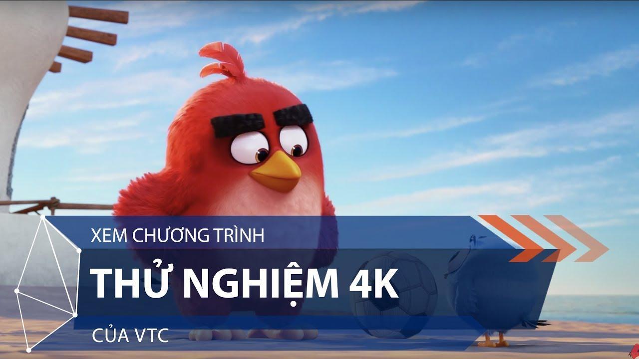 Trải nghiệm qua cuộc thử nghiệm miễn phí truyền hình 4K của VTC tại Việt Nam